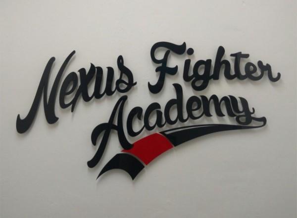3D Acryl Logo NFA (8mm durchgefärbt) mit Abstandshaltern auf Wand